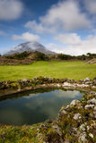 Azorean pastures royalty free stock image