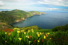 azorean widok Fotografia Royalty Free