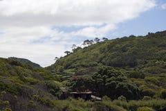 Azoren, bergen op het eiland Pico Royalty-vrije Stock Foto