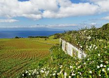 Azoren-Insel - Pico-Ansicht lizenzfreie stockfotos