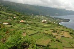 Azoren-Insellandschaft neben dem Ozean Stockbild