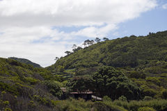 Azoren, montagne sull'isola Pico Fotografia Stock Libera da Diritti