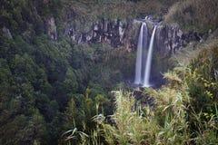 Azoren: Wasserfall Lizenzfreie Stockfotos