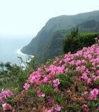Azores coastal scenery Royalty Free Stock Photography