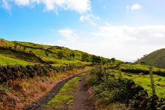 Azores Countryside Scene, Rural Landscape, Green Lush Grass, Colorful Flowers, Cobblestone Walls, Dirt Road, Travel Portugal royalty free stock photo