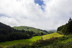 Azores Green hill landscape stock photography