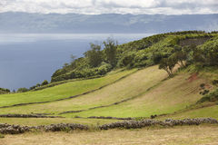 Azores green landscape in Sao Jorge and Pico island. Portugal Stock Image