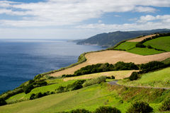 Azores - green landscape Stock Photo