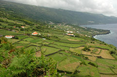 Azores Island landscape beside the ocean Stock Image