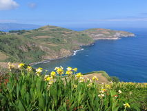 Azores islands, Portugal. Panorama of Sao Miguel, the largest island of the Azores archipelago in the Atlantic Ocean royalty free stock images