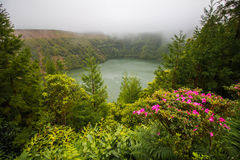 azores jeziorni Zdjęcia Royalty Free