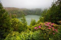 azores lake royaltyfria foton