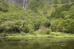 Azores landscape in Flores island. Waterfalls in Pozo da Alagoin Royalty Free Stock Images
