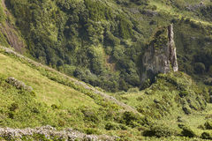 Azores landscape with rock and green vegetation in Flores island Stock Images