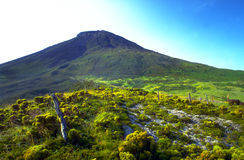 Azores - Ponta do Pico Royalty Free Stock Photo
