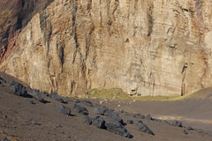 Azores rocky volcanic landscape in Faial island. Ponta dos Capel Stock Photos