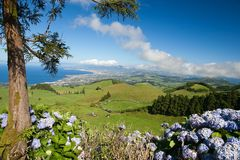 Azores - Sao Miguel Royalty Free Stock Photography