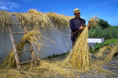 Azores - thatch weaving Stock Photo