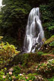 Azores Waterfall. Beautiful waterfall. Azores, São Miguel Island, Portugal Stock Photo