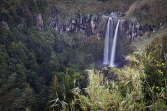 Azores: Waterfall. Waterfall in São Miguel island in Azores royalty free stock photos