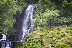 Azores: Waterfall. Waterfall in São Miguel island in Azores royalty free stock photo