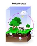 Azota cykl ilustracji