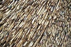 Azotea cubierta con paja Imagen de archivo libre de regalías