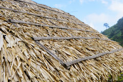 Azotea cubierta con paja Foto de archivo