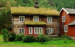 Azotea cubierta por Grass en Noruega Fotos de archivo