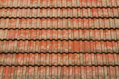 Azotea de azulejo rojo Imagen de archivo libre de regalías