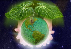 Azotea para el planeta verde Imagen de archivo