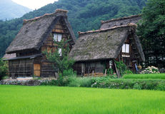 Azoteas cubiertas con paja en Ogimachi, Japón Imágenes de archivo libres de regalías