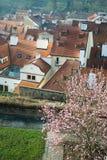 Azoteas de Praga en resorte Foto de archivo libre de regalías