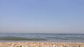 Azov hav, sandig strand med skal och små vågor arkivfilmer