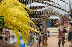 Aztec feathers Royalty Free Stock Image