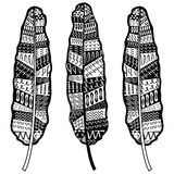 Aztec zentangle style feathers symbolizing native American culture in black and white with tribal ornaments. Aztec zentangle style feathers symbolizing native vector illustration