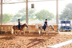 Azufaifas Yakov, Israel - 21 de septiembre de 2016: Lecciones del montar a caballo para los niños Fotografía de archivo libre de regalías