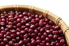 Azuki beans royalty free stock photos