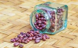 Azuki Beans  II Royalty Free Stock Image