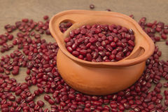 Azuki beans , red beans Stock Image