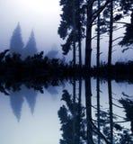Azul Foto de archivo