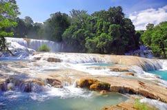 水色Azul瀑布,恰帕斯州,墨西哥 免版税库存照片