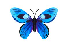 Azul bonito borboleta colorida Imagem de Stock