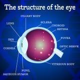 Azul da estrutura do olho Fotos de Stock