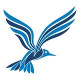 Azul da gaivota Foto de Stock