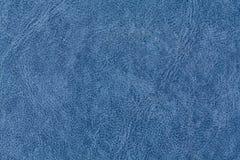 Azul de la piel Fotos de archivo