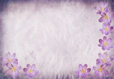 Azul de papel velho do fundo com elementos florais ilustração royalty free