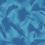 Azul do teste padrão das folhas das palmeiras Fotos de Stock
