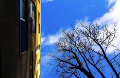 Azul e amarelo foto de stock