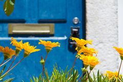 Azul e amarelo Fotos de Stock